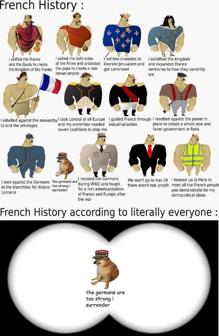 Memes French history war