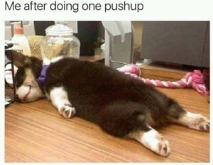After one push-up meme