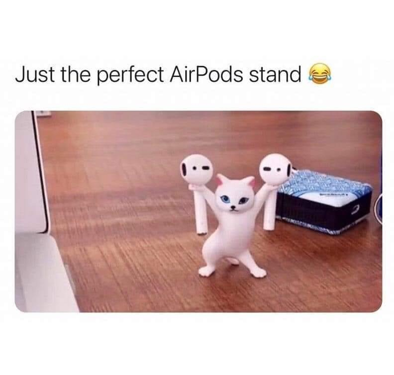 Memes Cat AirPod holder
