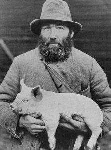 Farmer holding piglet pig