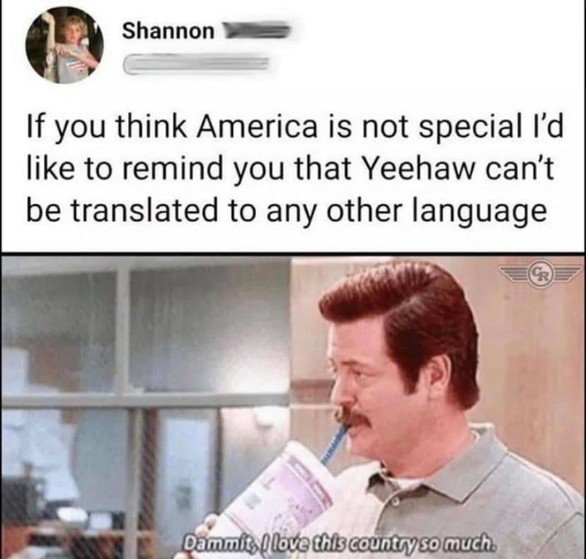 Memes United States of America Yeehaw