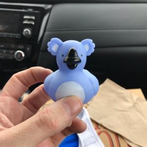 Blue koala rubber ducky