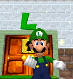 Luigi and door Super Mario 64 DS Nintendo DS