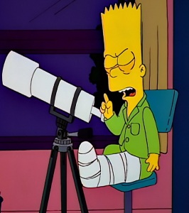 Bart Simpson thinks that Ned Flanders killed maude the Simpsons