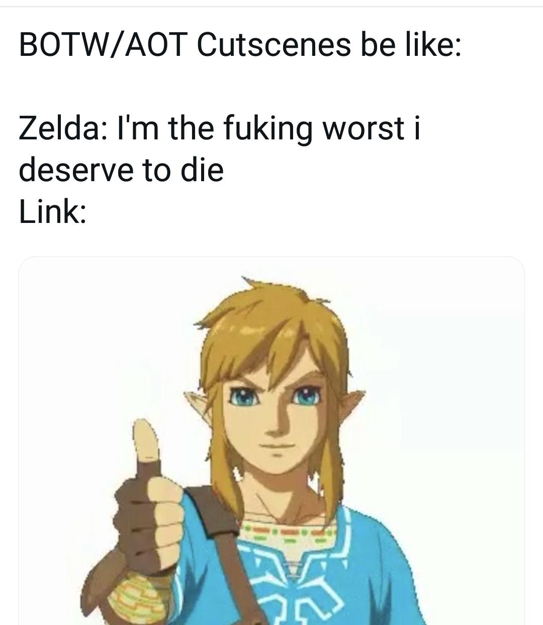 Memes link and Zelda the legend of Zelda breath of the wild Nintendo switch