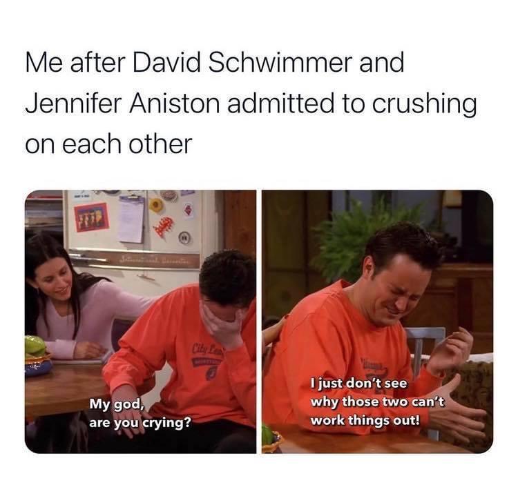 Memes David Schwimmer and Jennifer Aniston