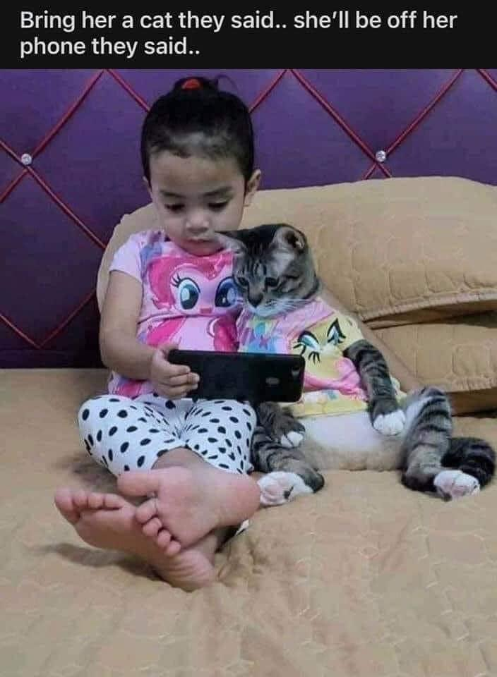 Memes little girl and her cat