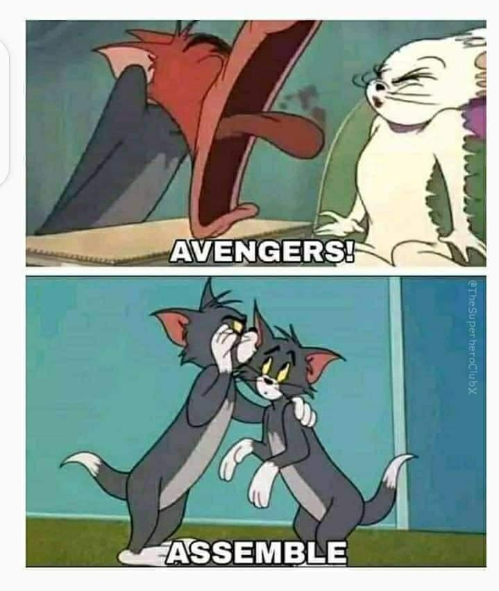 Memes Avengers Assemble Captain America Endgame