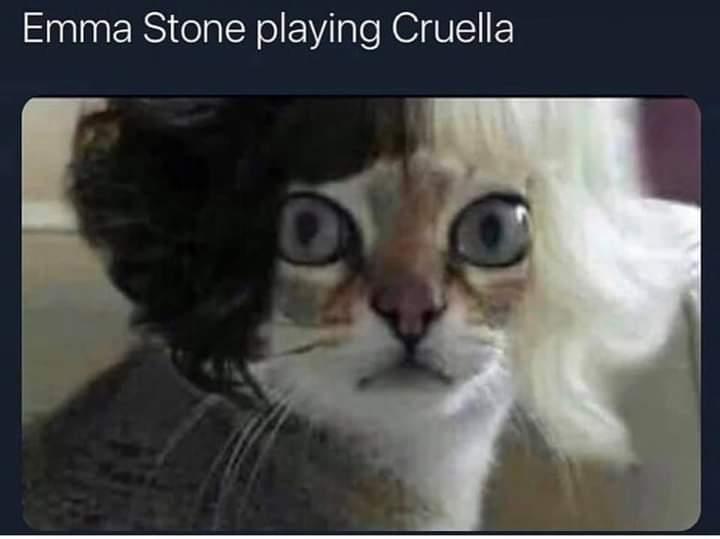 Memes Emma Stone cruella