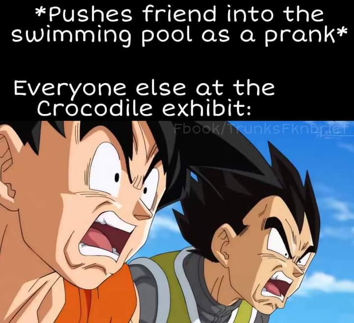 Memes crocodile at the zoo