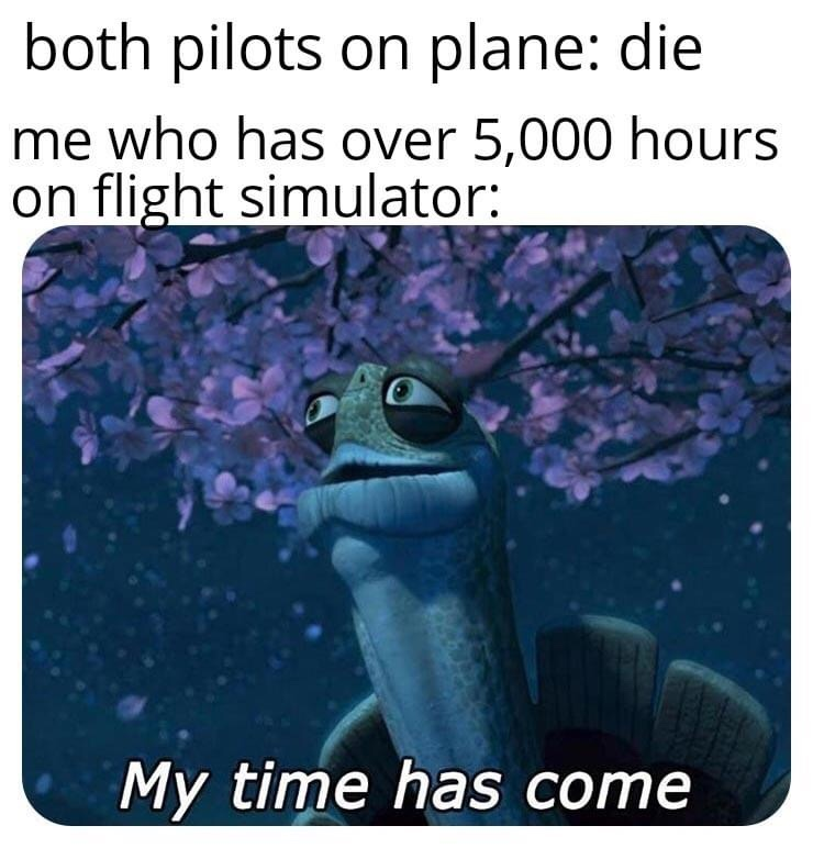 Memes flying the plane yourself