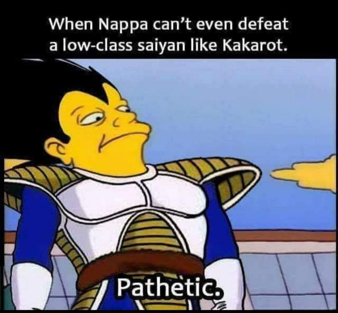 Memes dragon Ball Z Vegeta and Nappa