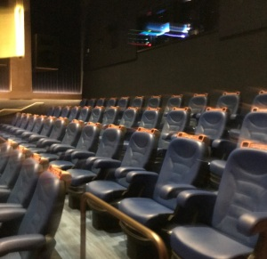 The Simpsons 4D Theater Myrtle Beach South Carolina seating area