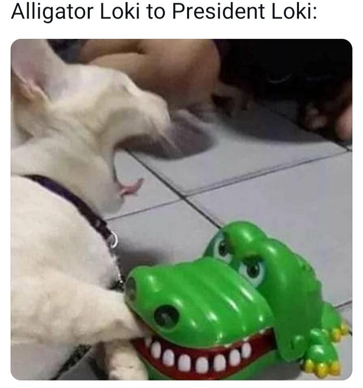 Memes alligator loki vs president loki