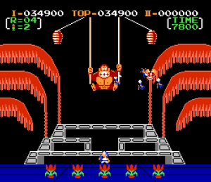 Stanley vs dk Donkey Kong 3 NES Nintendo