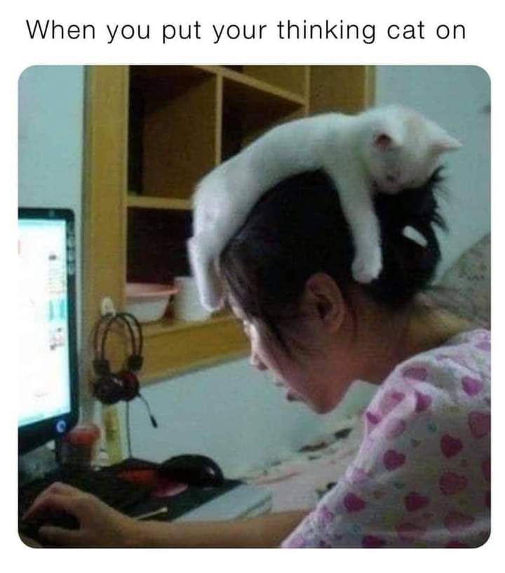 Memes thinking cap