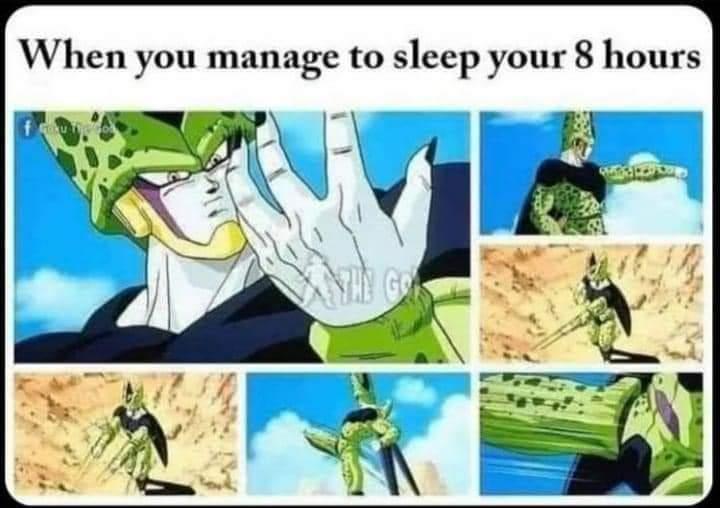 Memes getting 8 hours of sleep