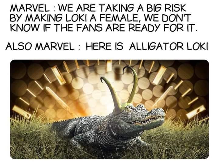 Memes alligator loki