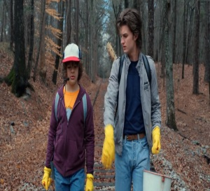 Stranger Things Dustin and Steve Netflix