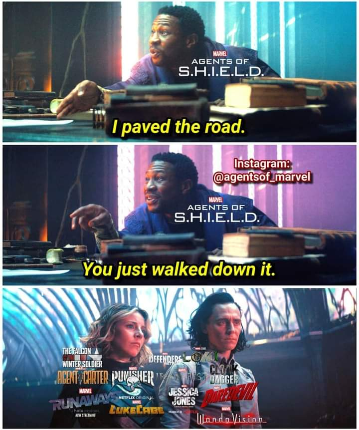 Memes agents of shield