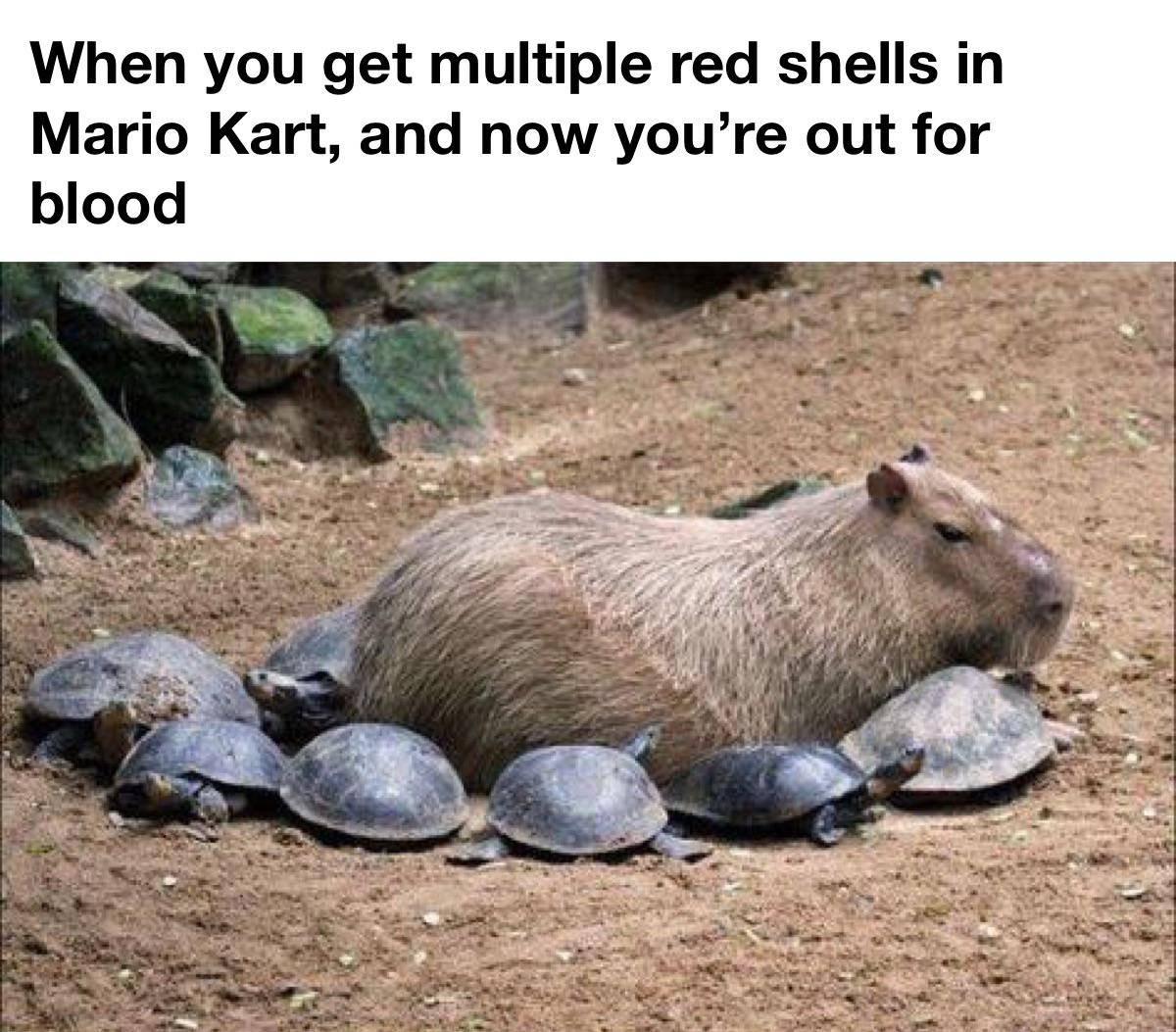 Memes Mario Kart red shells