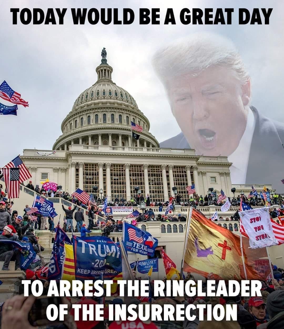Memes Donald Trump ringleader of the insurrection