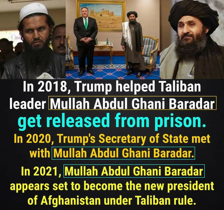 Memes trump deal with the Taliban