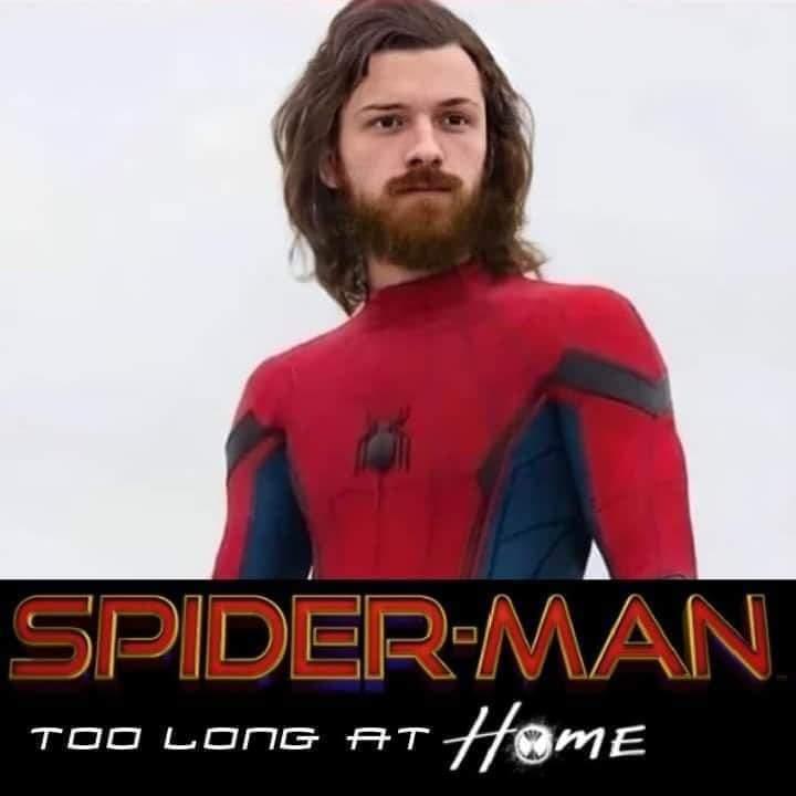 Memes Spider-Man too long at home