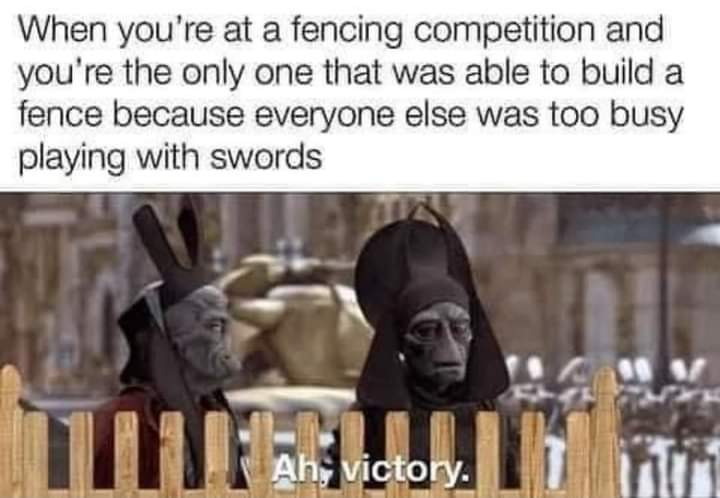 Memes fencing Olympics