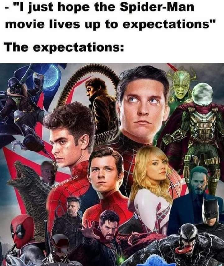 Memes Spider-Man no way home expectations