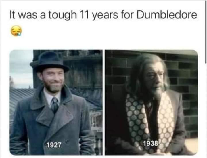 Memes albus Dumbledore Harry Potter