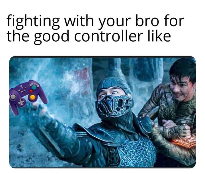 Memes fighting sibling for better controller video games