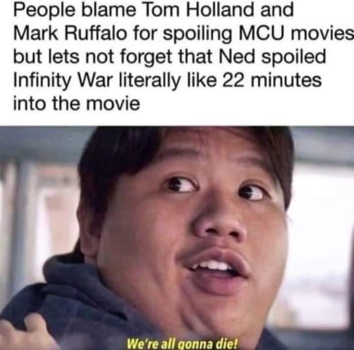 Memes ned infinity war