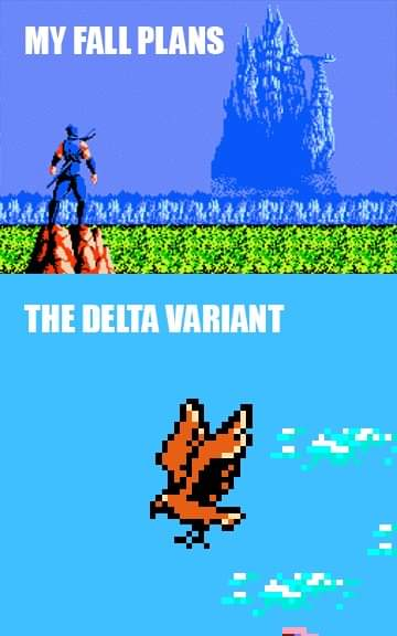 Memes ninja Gaiden NES