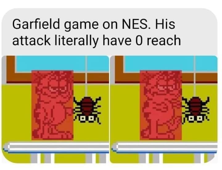 Memes Garfield video game nes