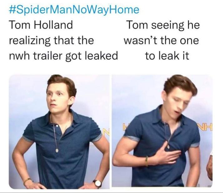 Memes tom holland no way home Spider-Man leak