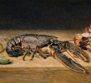 Fun facts about lobsters