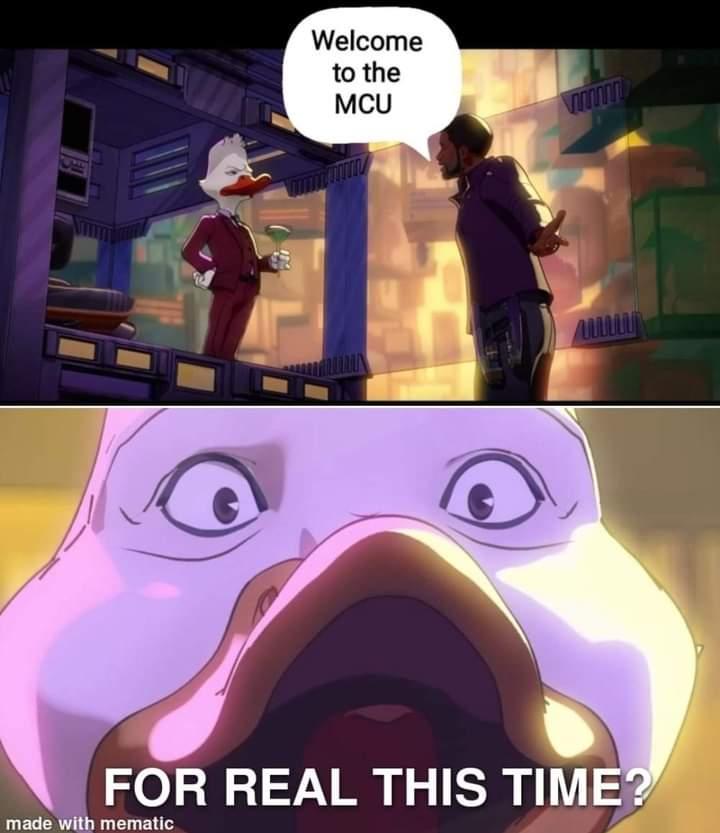 Memes Howard the duck mcu