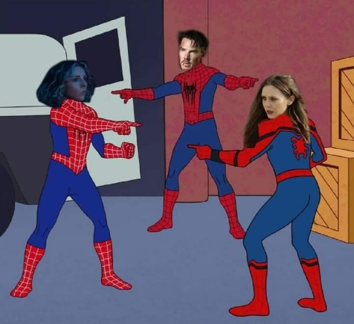Memes mcu multiverse dr strange Scarlet witch sylvie