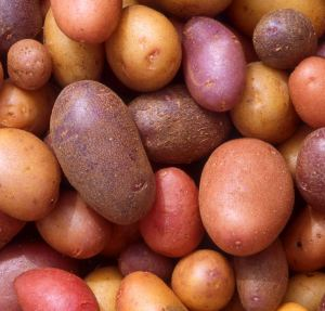 Fun facts about potatoes